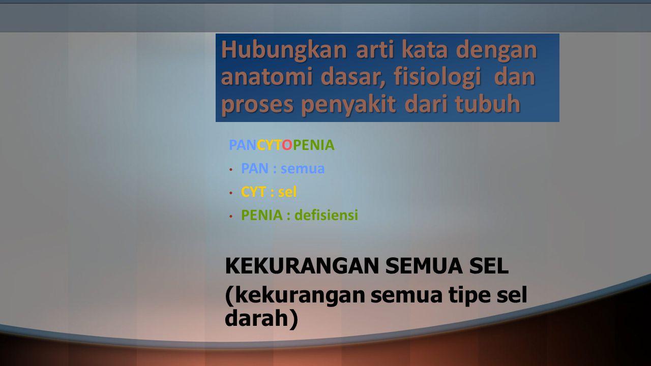 Hubungkan arti kata dengan anatomi dasar, fisiologi dan proses penyakit dari tubuh