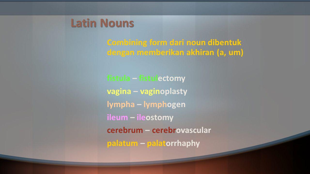 Latin Nouns Combining form dari noun dibentuk dengan memberikan akhiran (a, um) fistula – fistulectomy.