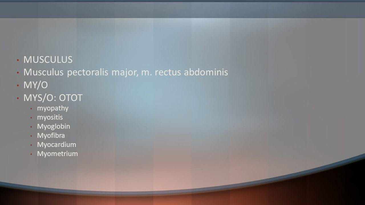 Musculus pectoralis major, m. rectus abdominis MY/O MYS/O: OTOT