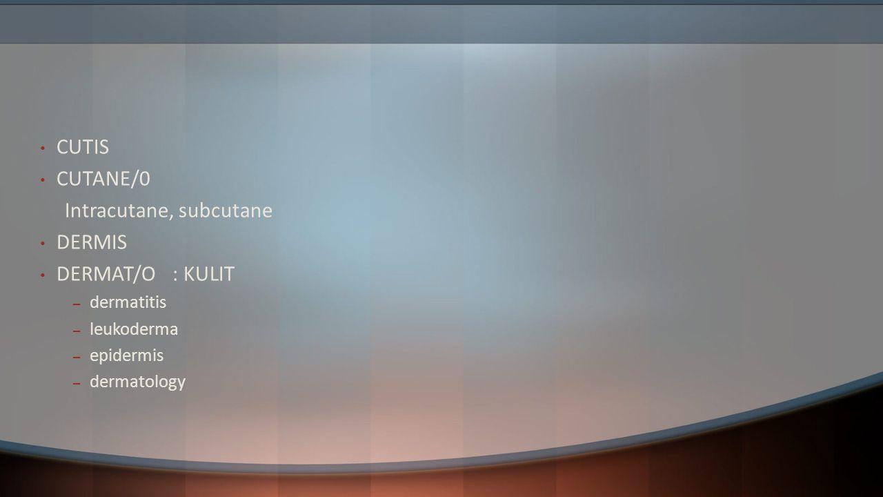 Intracutane, subcutane DERMIS DERMAT/O : KULIT
