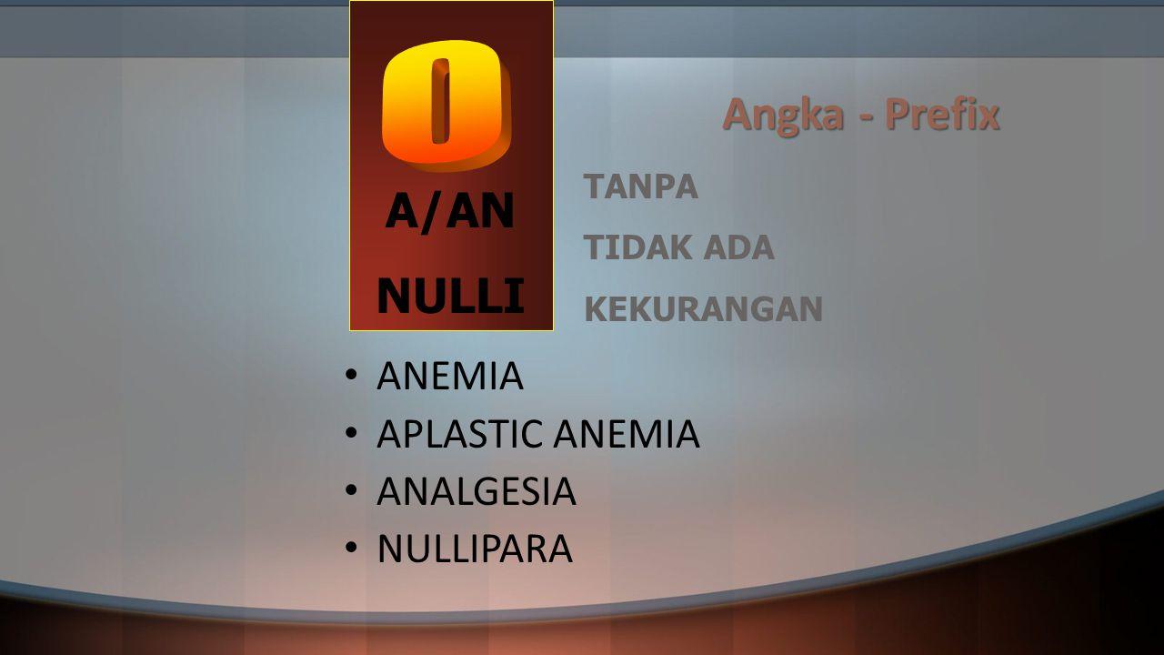 A/AN Angka - Prefix NULLI ANEMIA APLASTIC ANEMIA ANALGESIA NULLIPARA