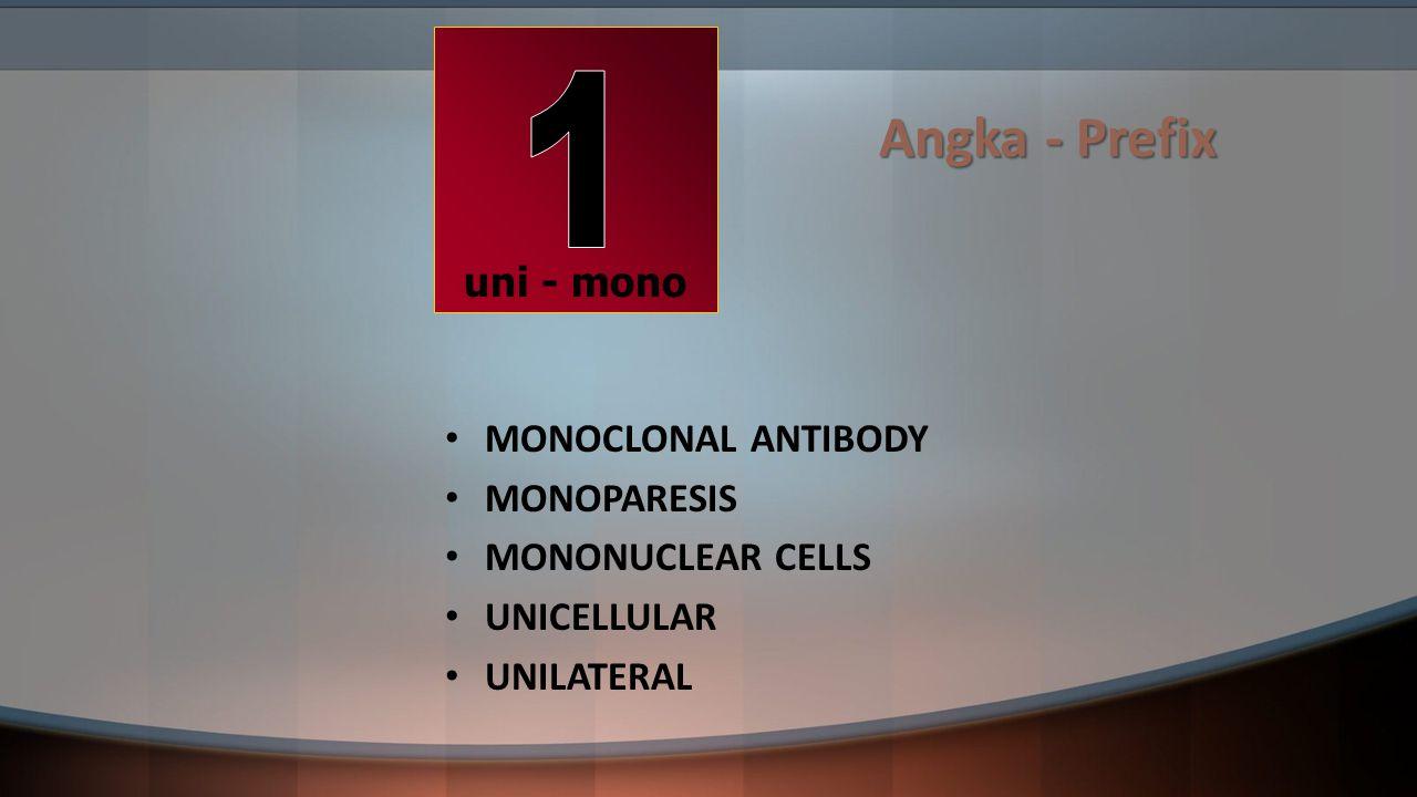Angka - Prefix 1 uni - mono MONOCLONAL ANTIBODY MONOPARESIS