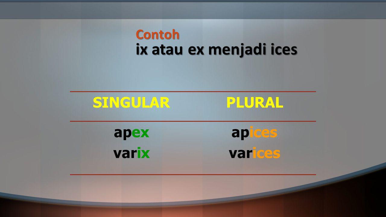 Contoh ix atau ex menjadi ices