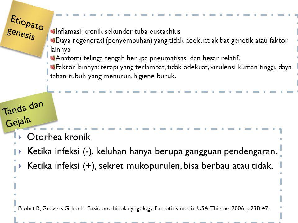 Tanda dan Gejala Etiopatogenesis Otorhea kronik