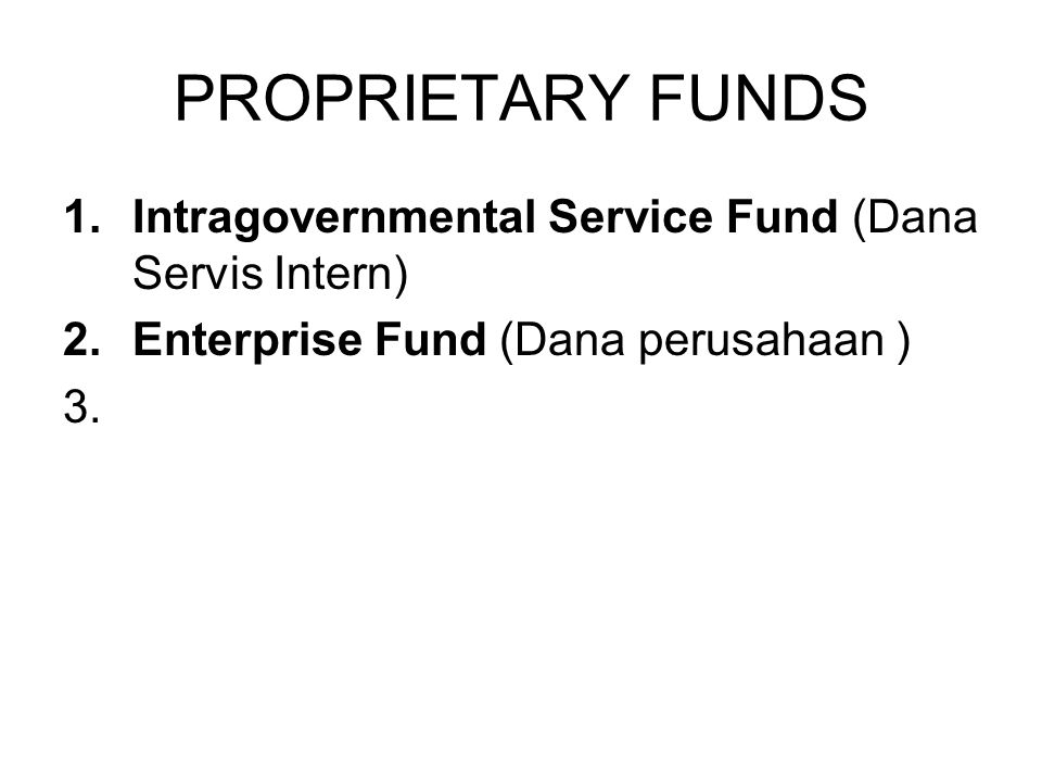 PROPRIETARY FUNDS Intragovernmental Service Fund (Dana Servis Intern)