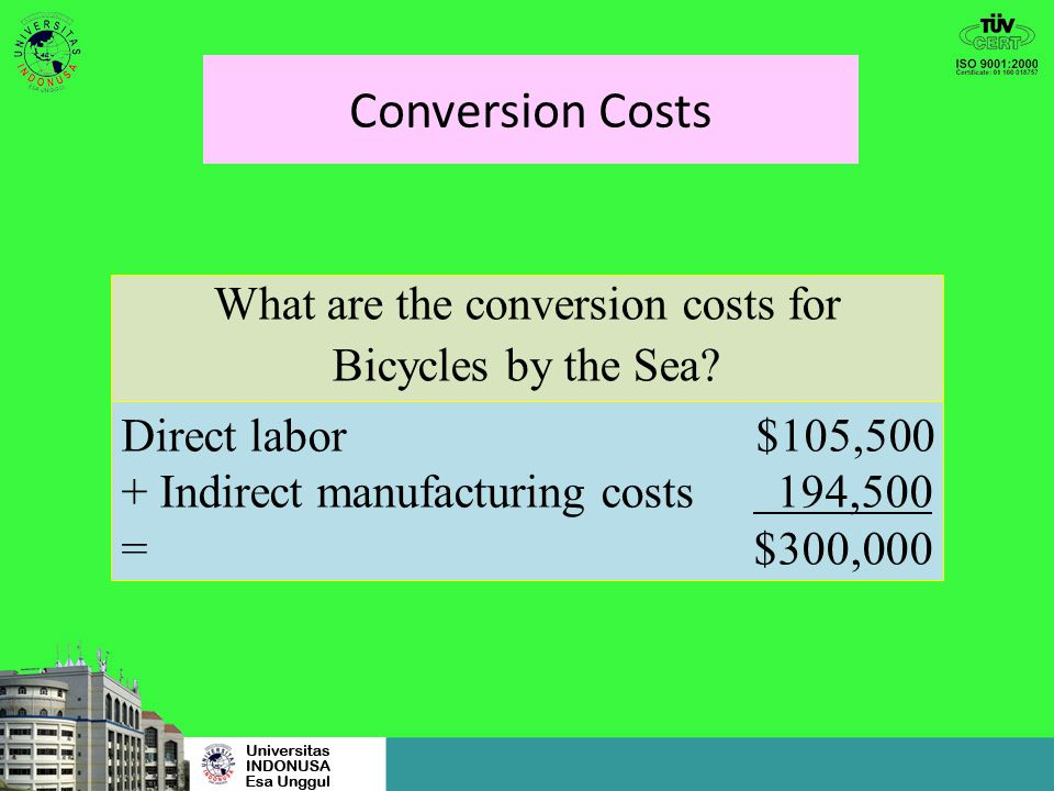 What are the conversion costs for