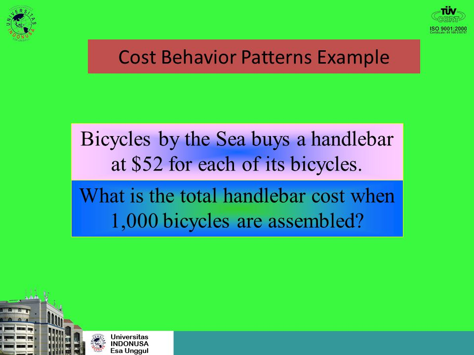 Cost Behavior Patterns Example