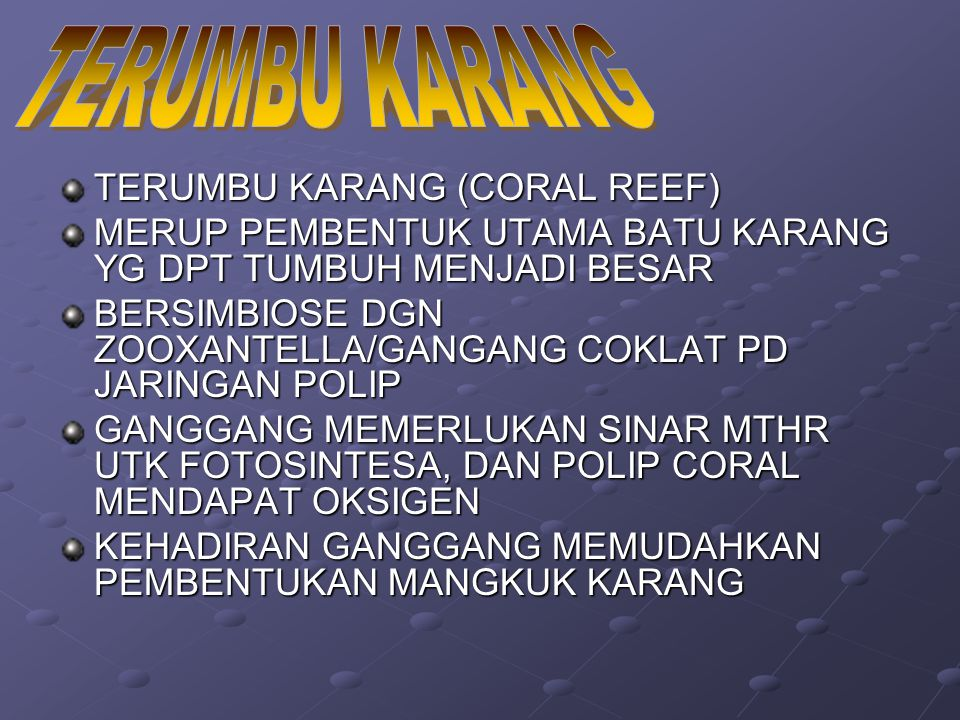 TERUMBU KARANG TERUMBU KARANG (CORAL REEF)