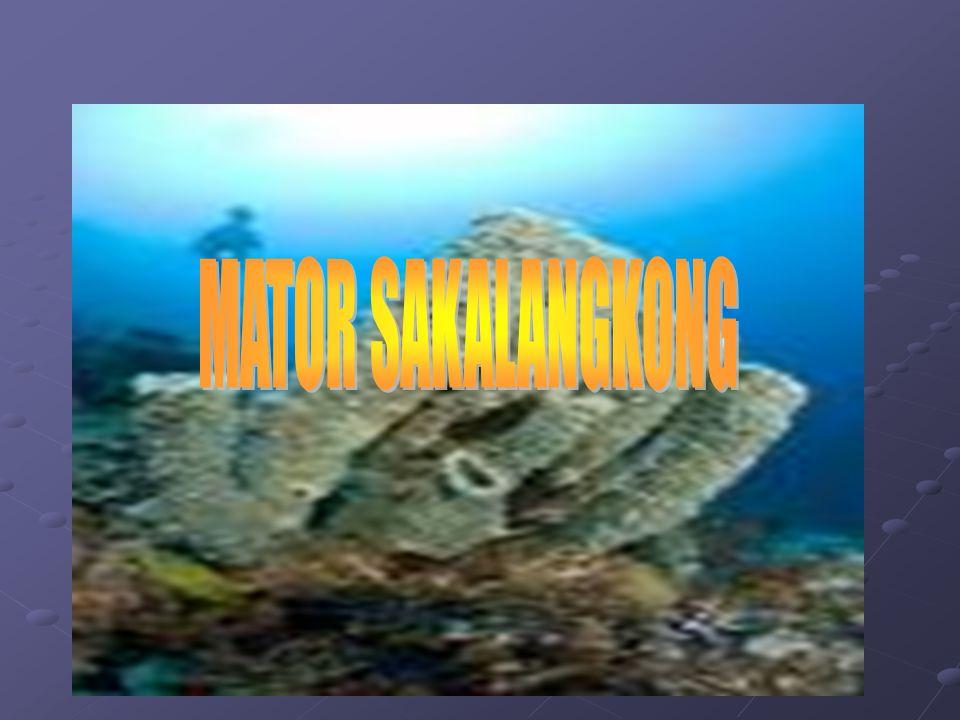 MATOR SAKALANGKONG