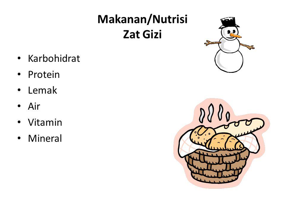 Makanan/Nutrisi Zat Gizi