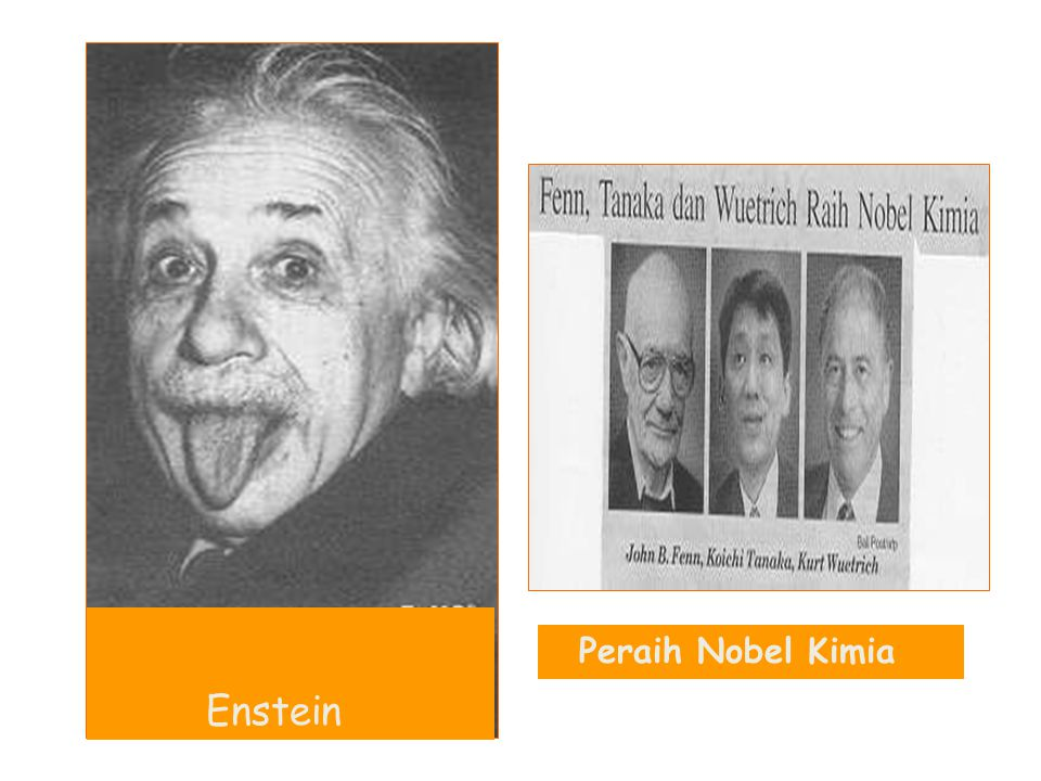 Enstein Peraih Nobel Kimia