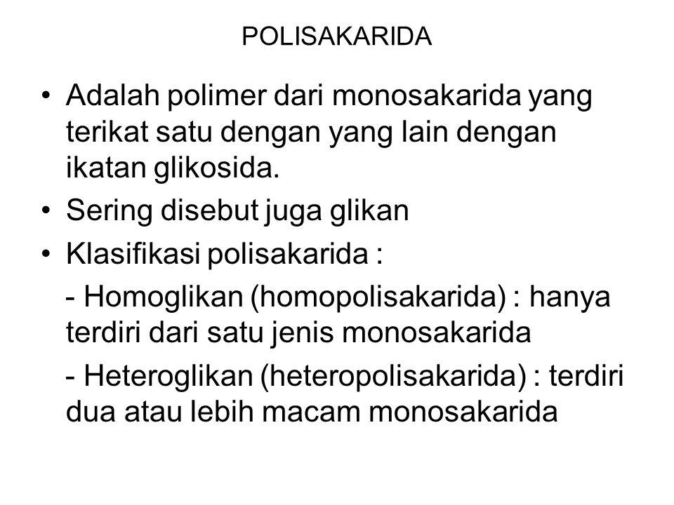 Sering disebut juga glikan Klasifikasi polisakarida :