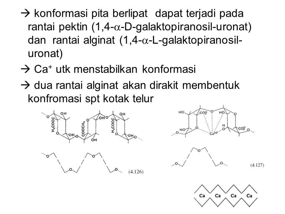  konformasi pita berlipat dapat terjadi pada rantai pektin (1,4--D-galaktopiranosil-uronat) dan rantai alginat (1,4--L-galaktopiranosil-uronat)