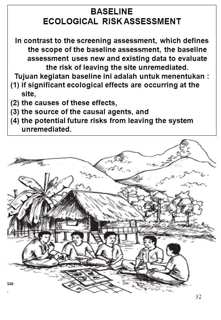 BASELINE ECOLOGICAL RISK ASSESSMENT