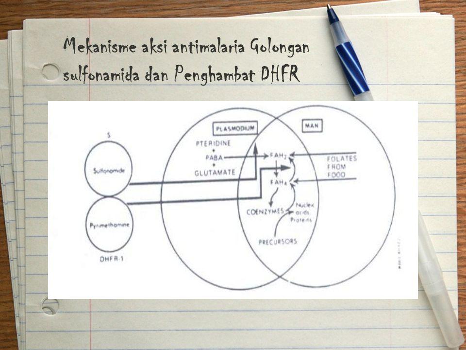 Mekanisme aksi antimalaria Golongan sulfonamida dan Penghambat DHFR