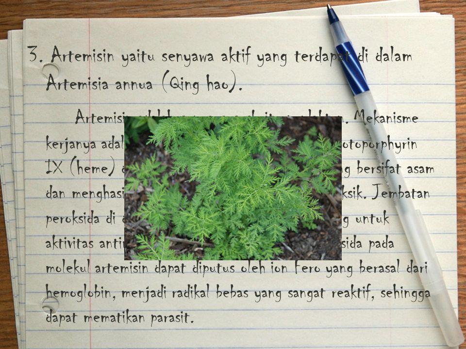 3. Artemisin yaitu senyawa aktif yang terdapat di dalam Artemisia annua (Qing hao).