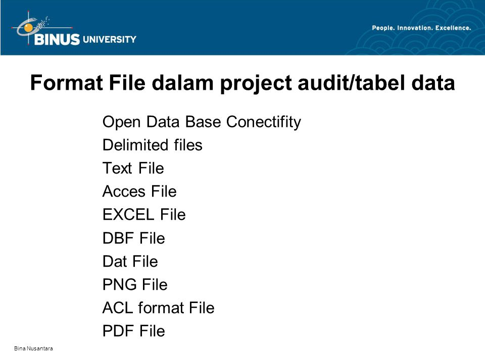 Format File dalam project audit/tabel data