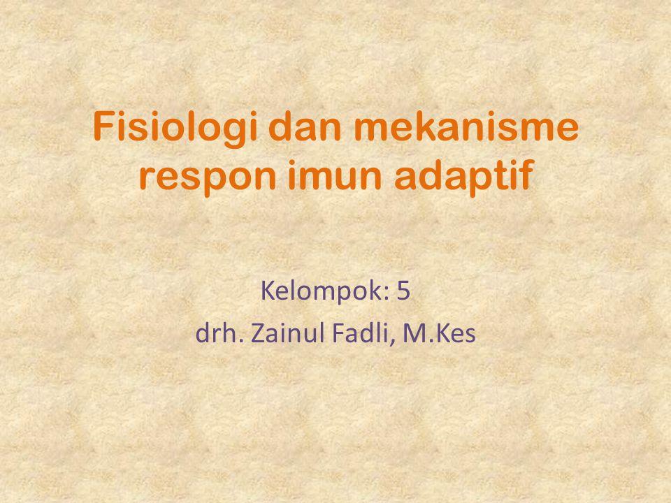 Fisiologi dan mekanisme respon imun adaptif