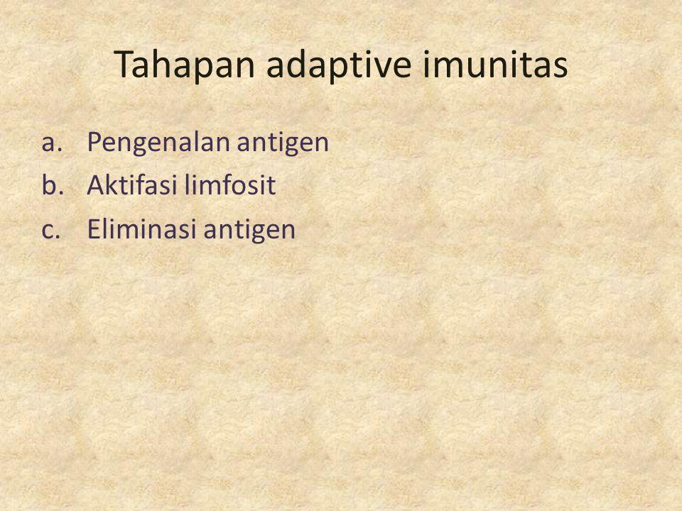 Tahapan adaptive imunitas