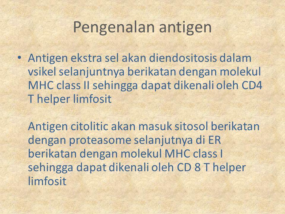 Pengenalan antigen