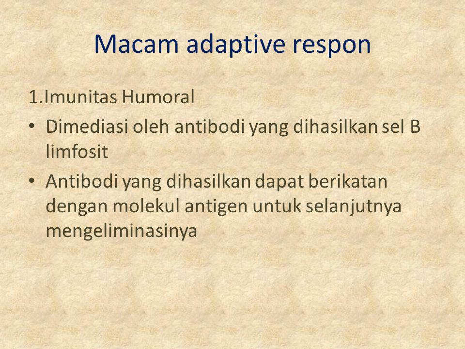 Macam adaptive respon 1.Imunitas Humoral