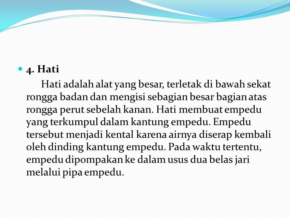 4. Hati