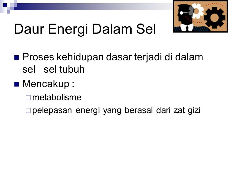 Daur Energi Dalam Sel Proses kehidupan dasar terjadi di dalam sel sel tubuh. Mencakup : metabolisme.