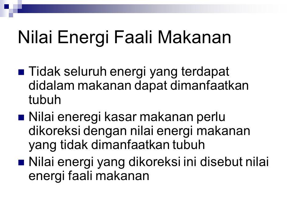 Nilai Energi Faali Makanan