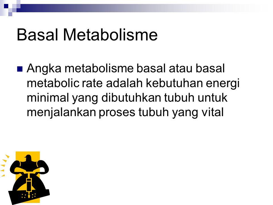 Basal Metabolisme