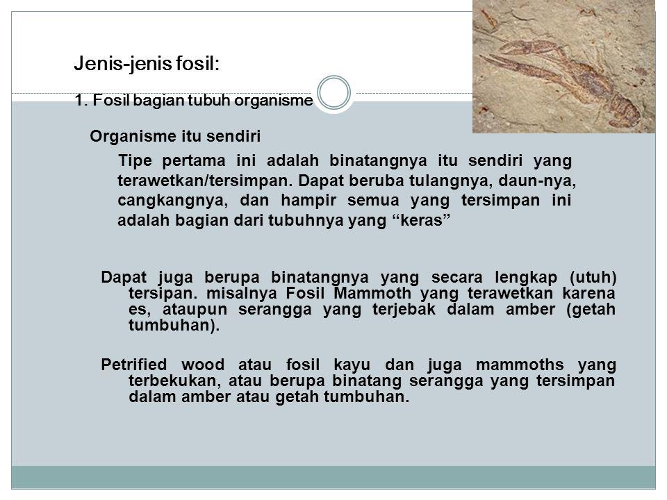 Jenis-jenis fosil: 1. Fosil bagian tubuh organisme