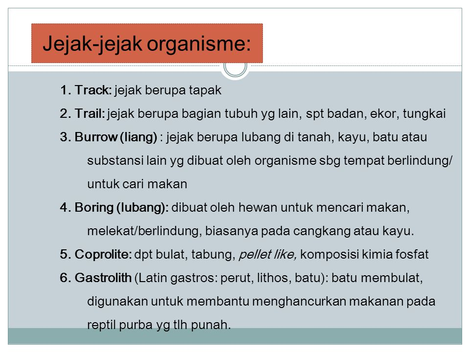 Jejak-jejak organisme: