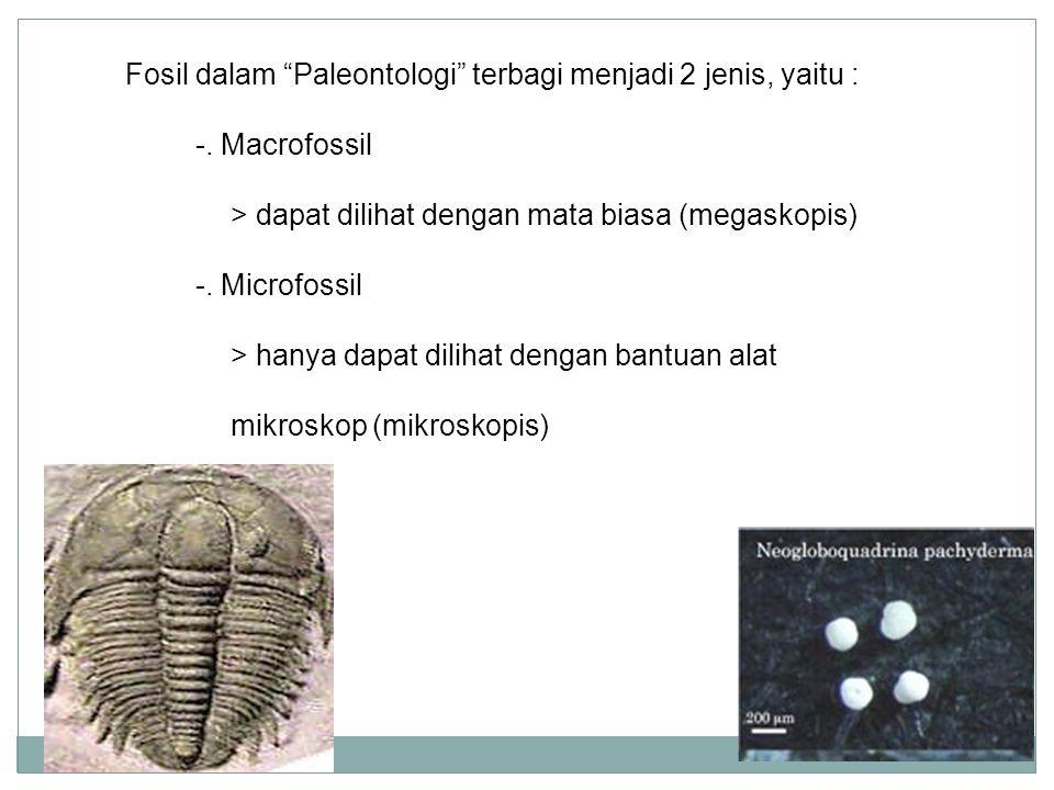 Fosil dalam Paleontologi terbagi menjadi 2 jenis, yaitu :