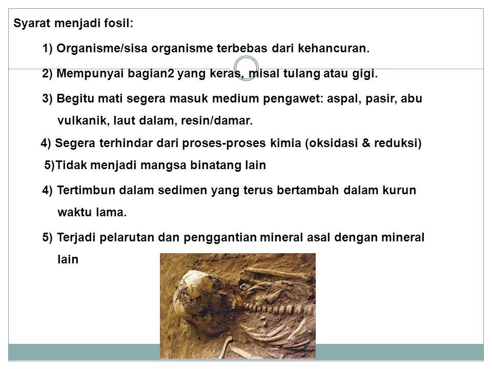 Syarat menjadi fosil: 1) Organisme/sisa organisme terbebas dari kehancuran. 2) Mempunyai bagian2 yang keras, misal tulang atau gigi.