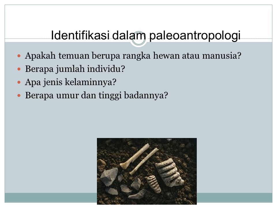 Identifikasi dalam paleoantropologi