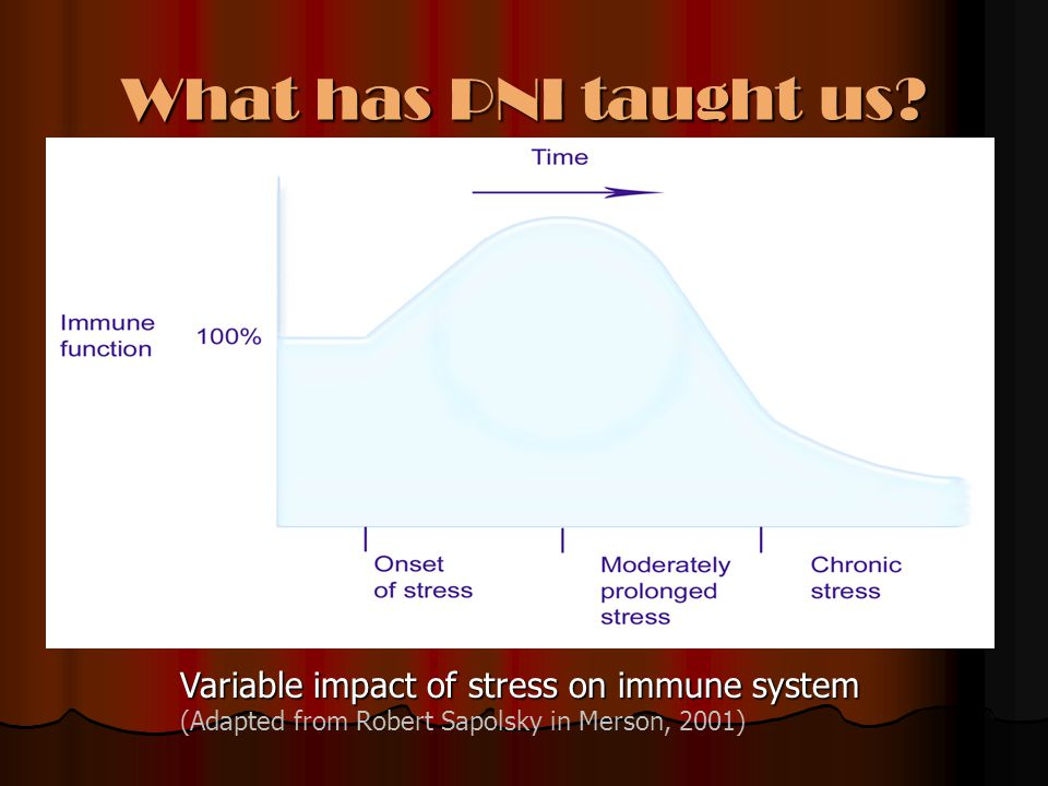 What has PNI taught us Variable impact of stress on immune system