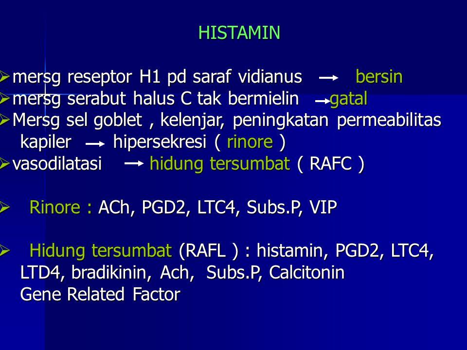 HISTAMIN mersg reseptor H1 pd saraf vidianus. mersg serabut halus C tak bermielin gatal. Mersg sel goblet , kelenjar, peningkatan permeabilitas.