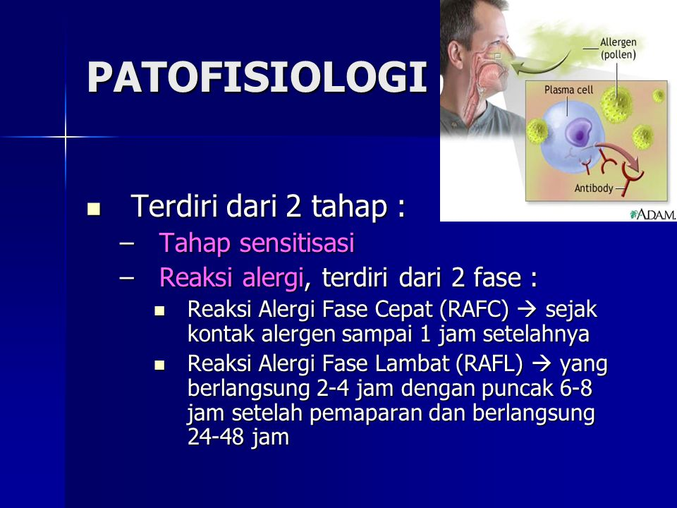PATOFISIOLOGI Terdiri dari 2 tahap : Tahap sensitisasi