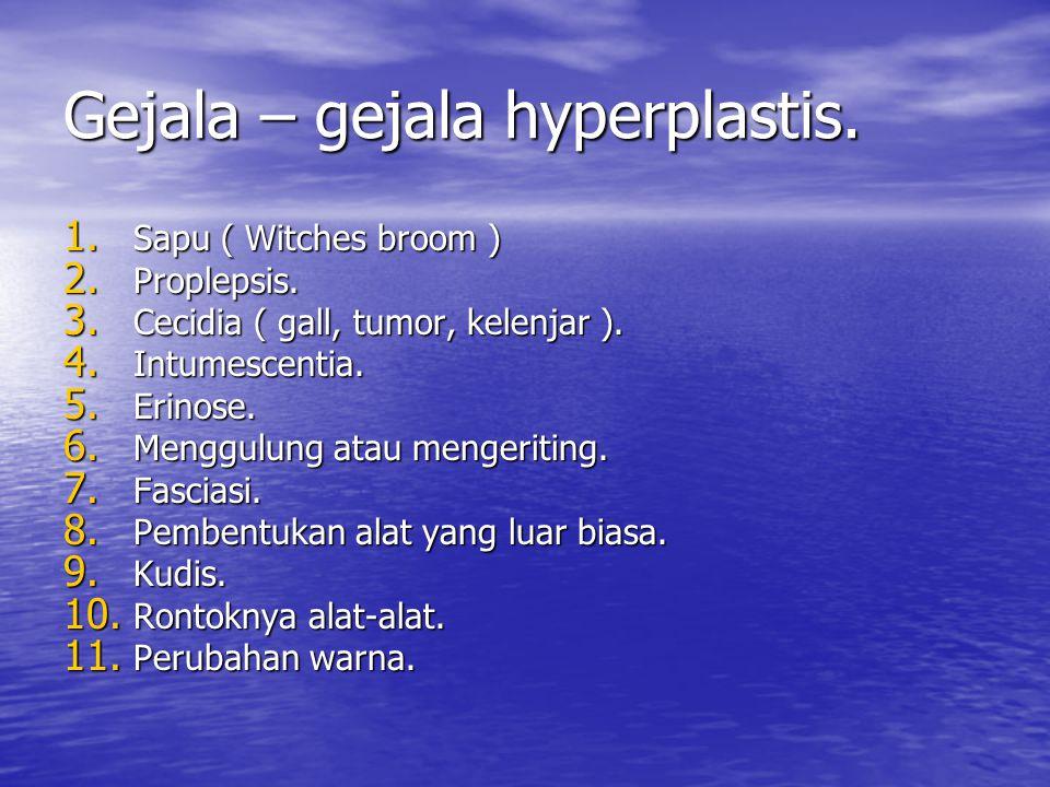 Gejala – gejala hyperplastis.