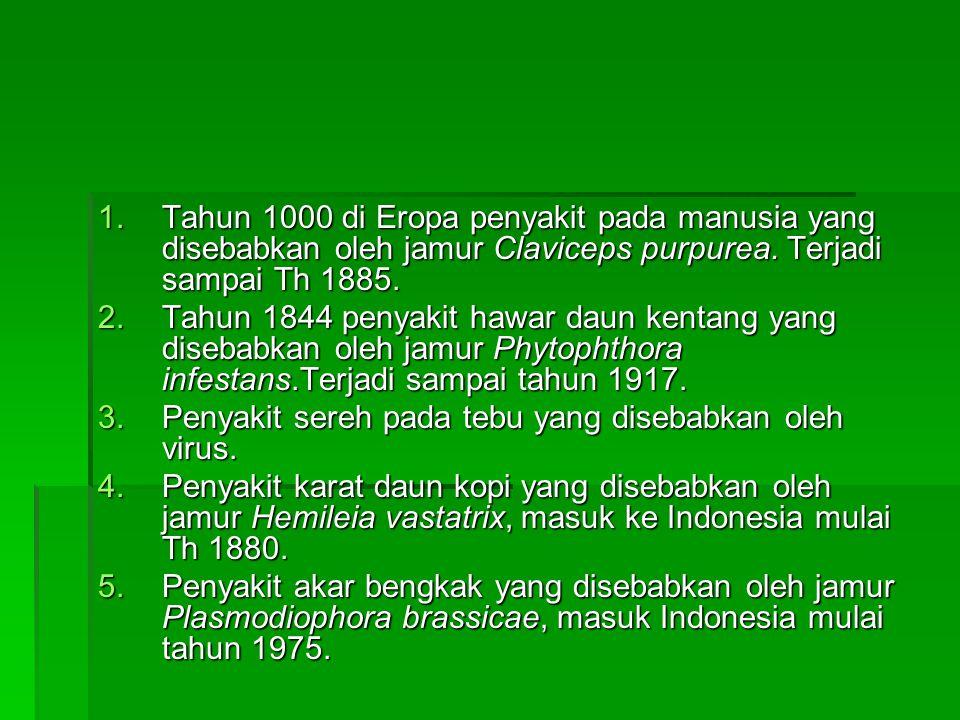 Tahun 1000 di Eropa penyakit pada manusia yang disebabkan oleh jamur Claviceps purpurea. Terjadi sampai Th 1885.