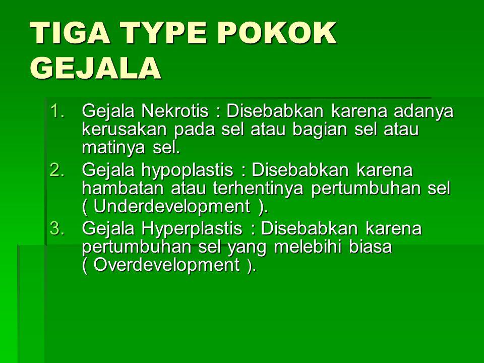 TIGA TYPE POKOK GEJALA Gejala Nekrotis : Disebabkan karena adanya kerusakan pada sel atau bagian sel atau matinya sel.