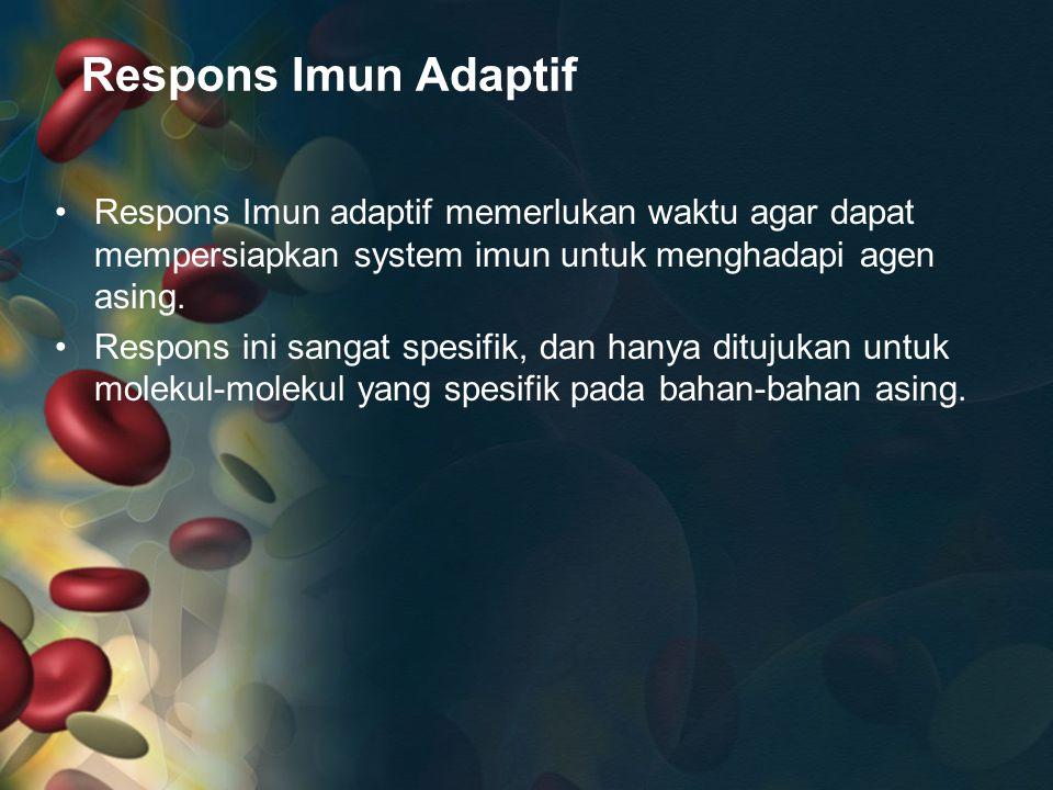Respons Imun Adaptif Respons Imun adaptif memerlukan waktu agar dapat mempersiapkan system imun untuk menghadapi agen asing.