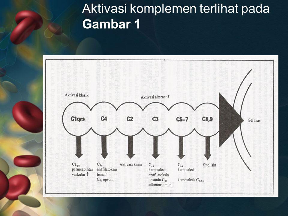 Aktivasi komplemen terlihat pada Gambar 1