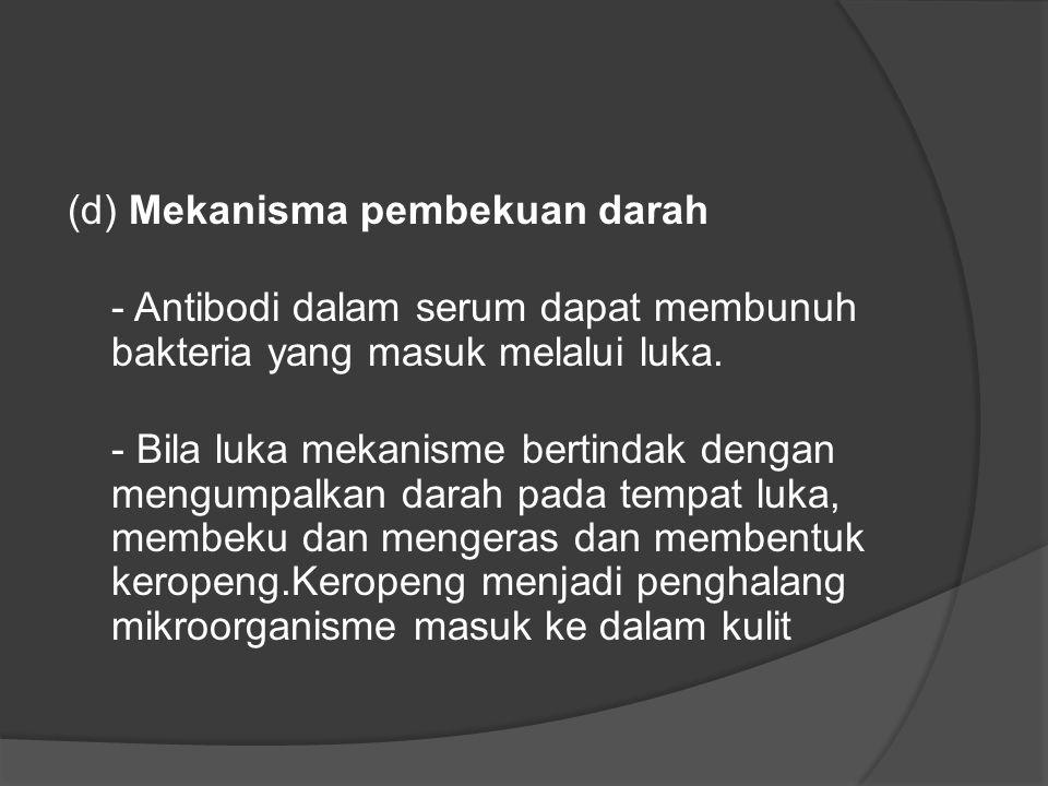 (d) Mekanisma pembekuan darah - Antibodi dalam serum dapat membunuh bakteria yang masuk melalui luka.
