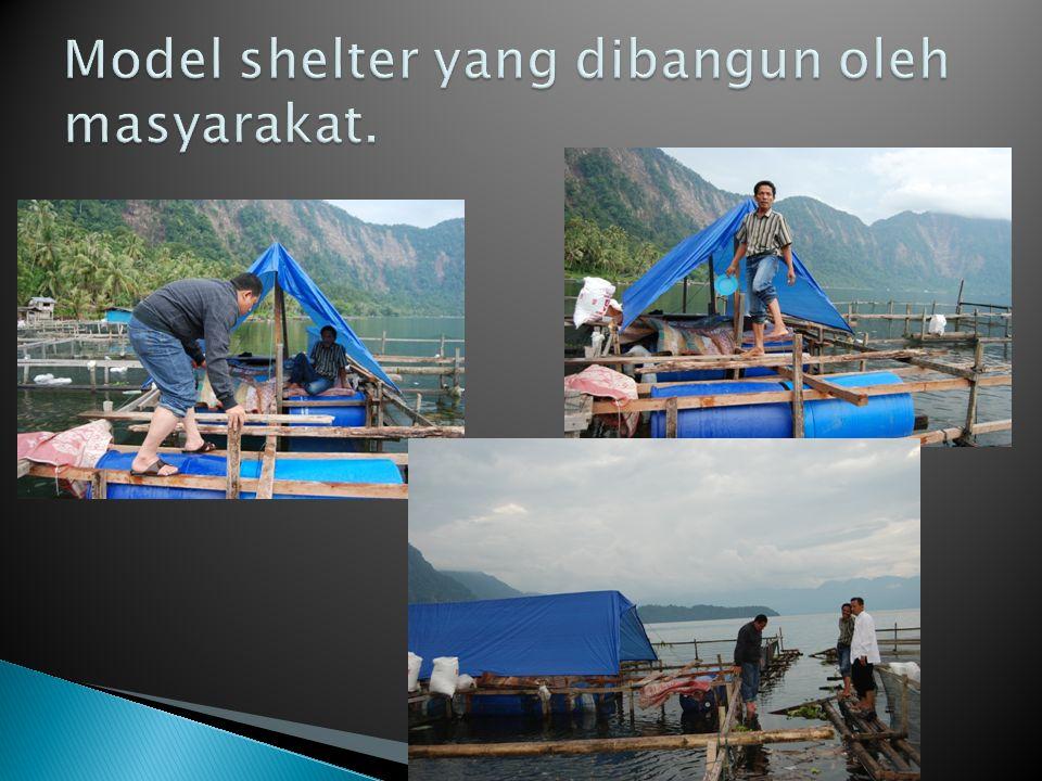 Model shelter yang dibangun oleh masyarakat.