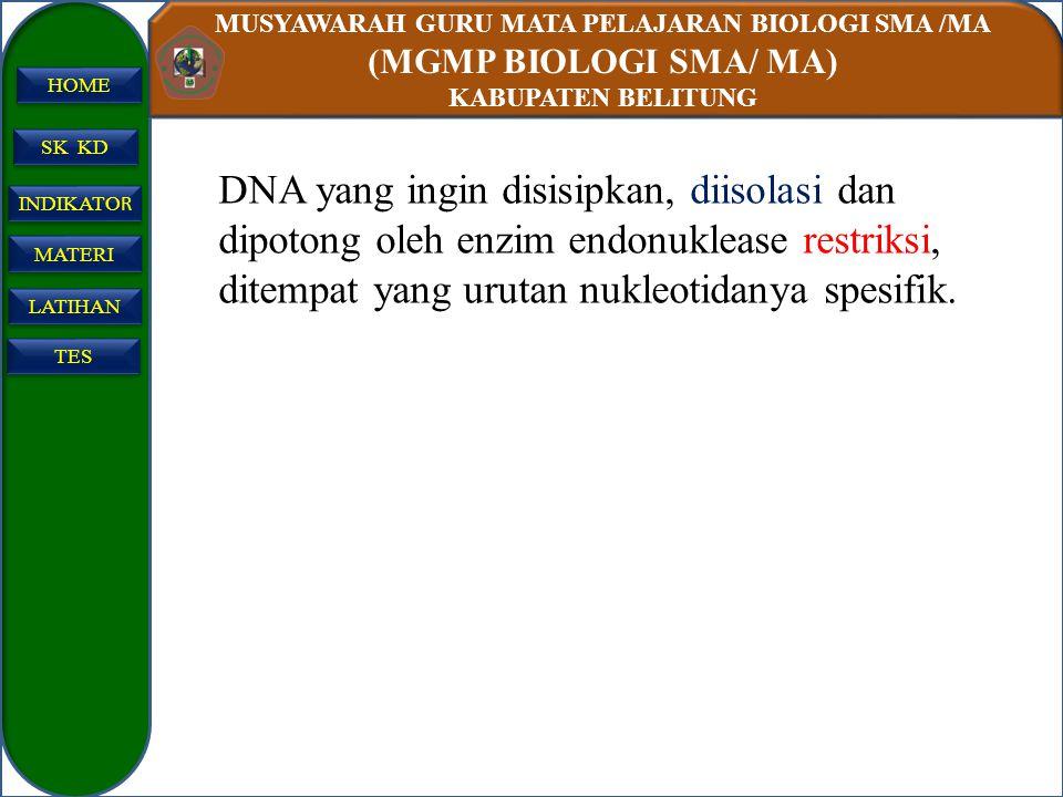 DNA yang ingin disisipkan, diisolasi dan dipotong oleh enzim endonuklease restriksi, ditempat yang urutan nukleotidanya spesifik.
