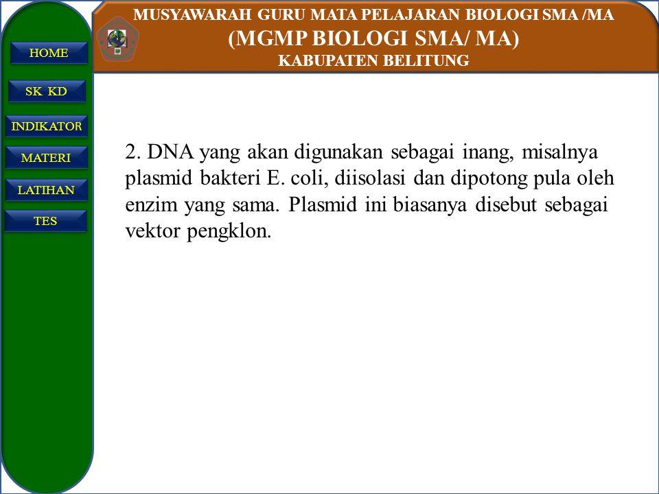 2. DNA yang akan digunakan sebagai inang, misalnya plasmid bakteri E
