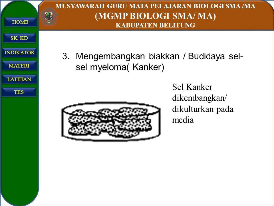 Mengembangkan biakkan / Budidaya sel-sel myeloma( Kanker)