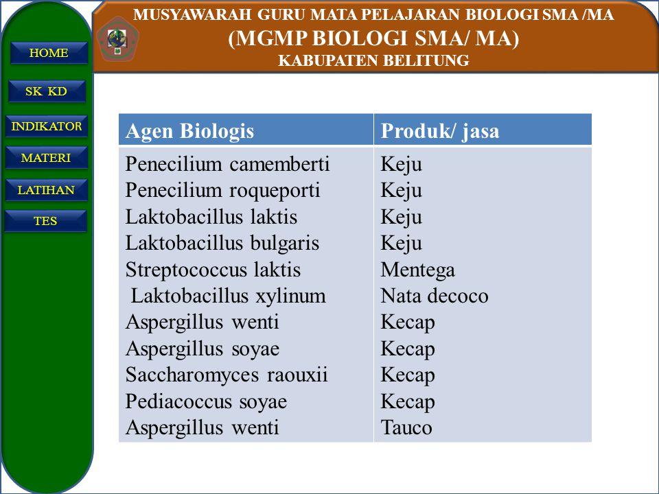 Agen Biologis Produk/ jasa. Penecilium camemberti. Penecilium roqueporti. Laktobacillus laktis. Laktobacillus bulgaris.