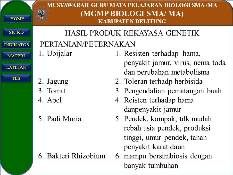 HASIL PRODUK REKAYASA GENETIK