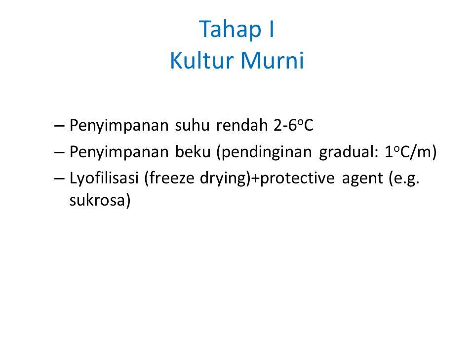 Tahap I Kultur Murni Penyimpanan suhu rendah 2-6oC